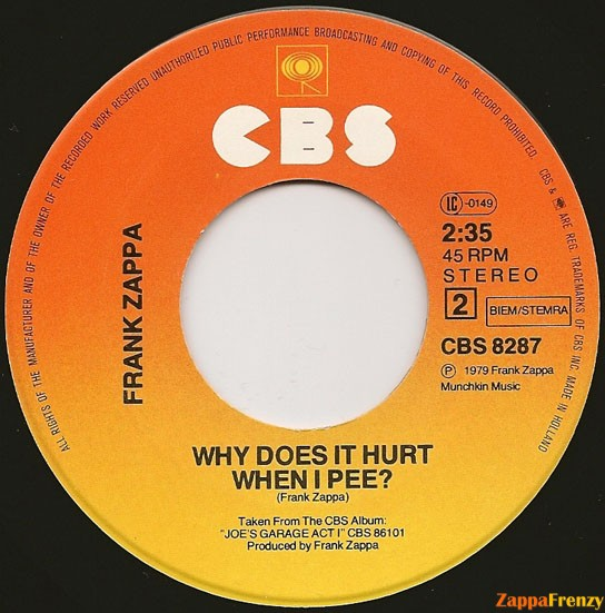 Why does it hurt when i pee